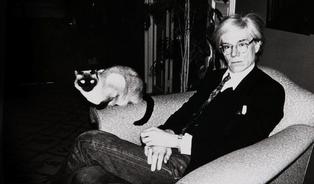 Andy Warhol e um de seus gatos Sam