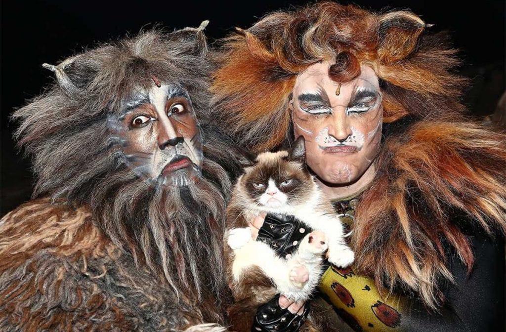 Grumpy Cat no musical Cats
