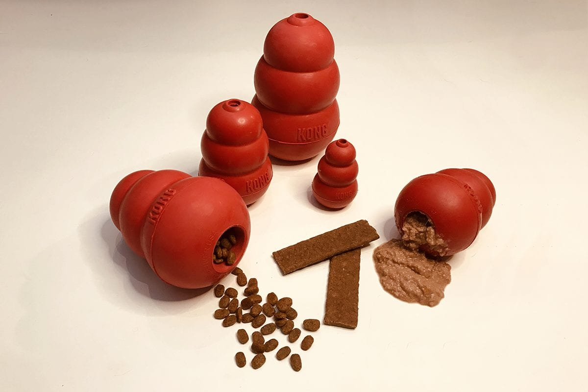 Brinquedos da Kong